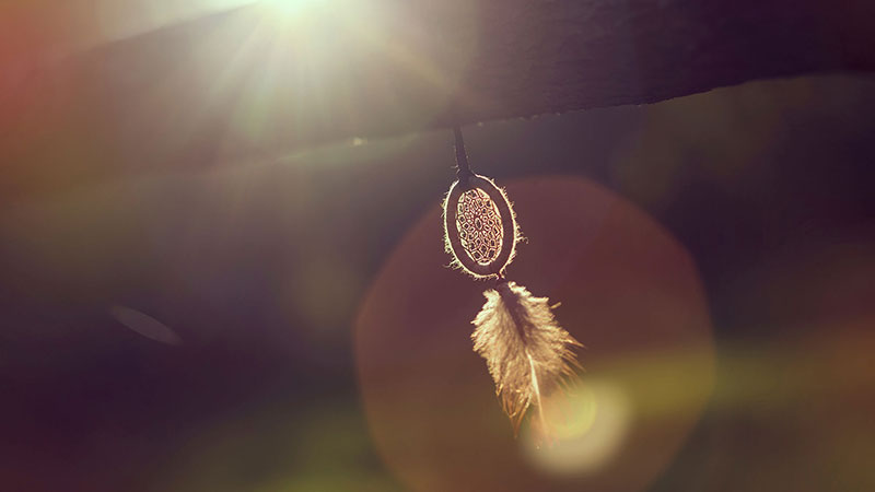 A handmade dream catcher hanging on a wooden fence.